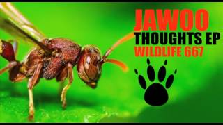 Jawoo - Hidden Thoughts (Original Mix) [Wildlife]