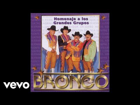 Bronco - Naila (Cover Audio)