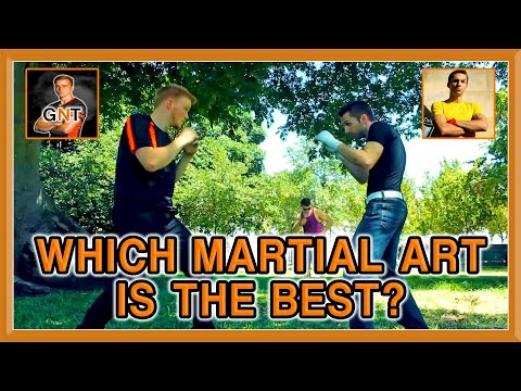 Which Martial Art is the BEST?   KwonKicker & GNT