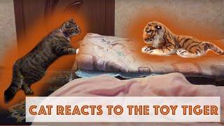 Кошка первый раз видит игрушечного тигра | Cat's reacting to a toy tiger