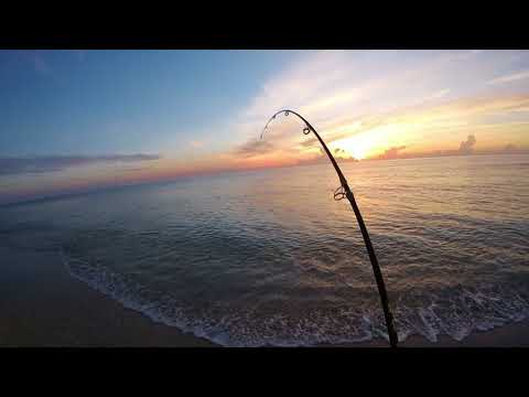Surf Fishing The Treasure Coast Of Florida Plus Free Surf Fishing Course