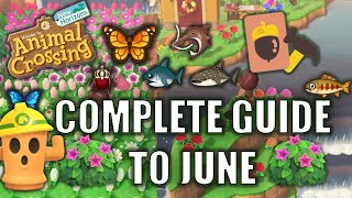 COMPLETE GUIDE TO JUNE ALL Fish Bugs Shrubs and Seasonals in Animal Crossing New Horizons