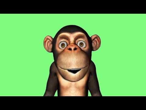La comptine du singe # Douce nuit