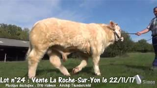 Lot 24 Vente Simon Genetic La Roche-Sur-Yon 22/11/2017