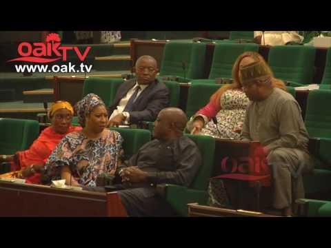Reps probe finance minister, Kemi Adeosun, over N1bn NITDA fund