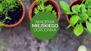 Akademia Miejskiego Ogrodnika – Jak uprawiać zioła w domu? [2018][Wrocław]