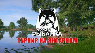 Карп голый и его собратья на оз Янтарное Русская Рыбалка 4