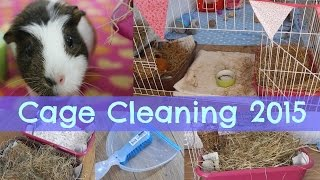 Cage Cleaning - February 2015 | Hamster Horsesandcats