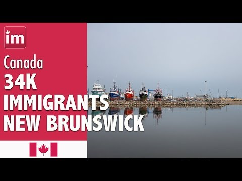 New Brunswick Immigrants By Place of Birth | Immigration to Canada 2018