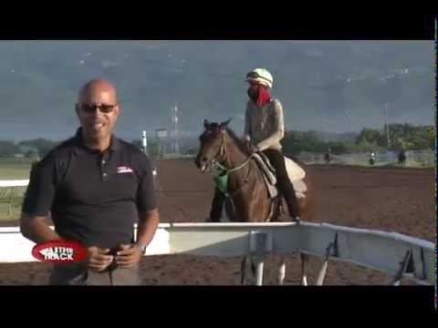 Jamaica's BurgerKing Superstakes & more! | At the Track | Nov 19, 2015