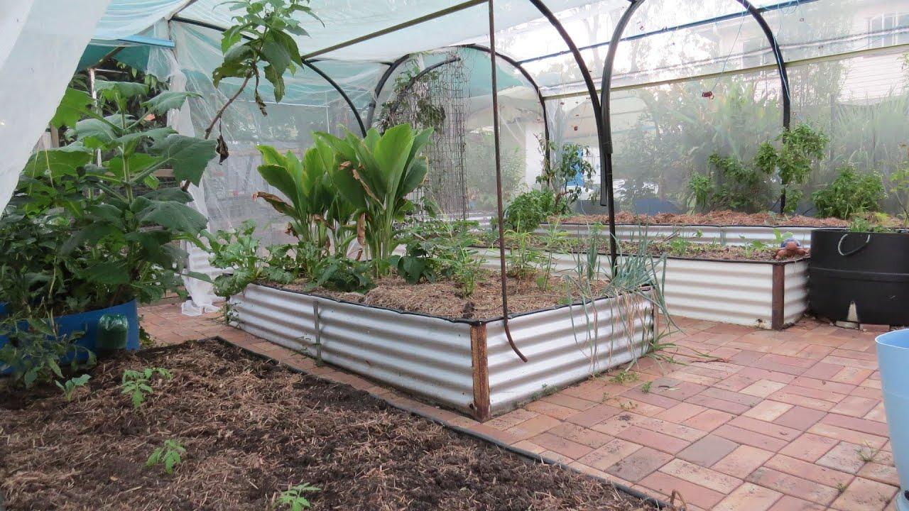 Backyard garden layout - Veggie Garden Update Cool Weather Polyculture Beds 5th