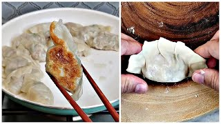 Homemade Pan Fried Chicken Dumplings   How To Make Dumplings from Scratch