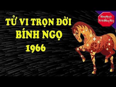 Bính Ngọ 1966, Tử Vi Trọn Đời Giàu Có Và Thành Công Vang Dội Bốn Phương. Giang Nguyễn Tử Vi