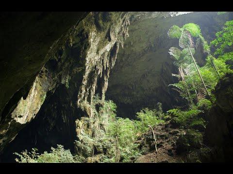 Visiting Deer Cave,  Cave in Miri, Sarawak, Malaysia