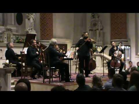 Vivaldi - La Primavera e l'estate | Cesare Zanfini