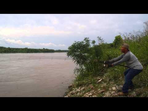 Snagging In Louisiana Locking Dam