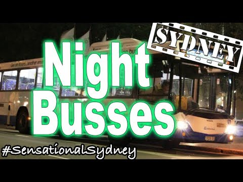 How To Take A Sydney Night Bus