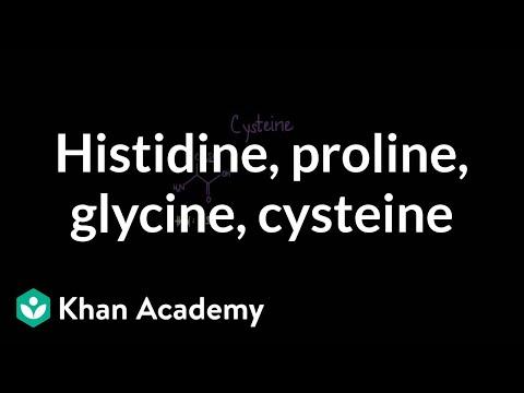 Special cases: Histidine, proline, glycine, cysteine | MCAT | Khan Academy