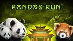 Panda's Run by Tom Horn