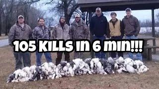 Snow Goose hunt 2015 with Snow Pros