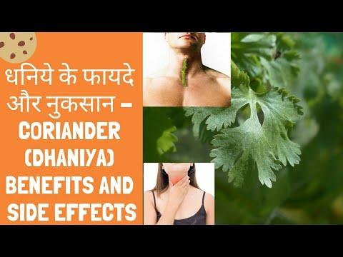 धनिये के फायदे और नुकसान Coriander (dhaniya) Benefits and Side Effects