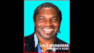 Sly Mongoose - Ainsworth Rose
