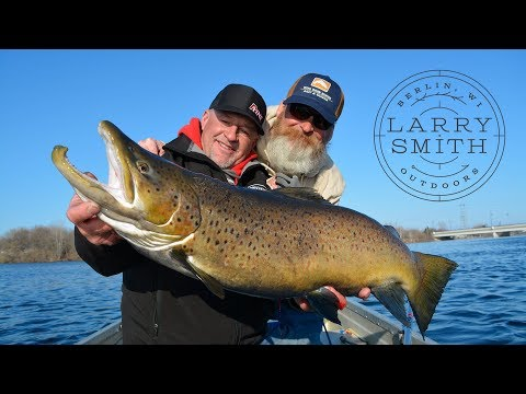 Trolling For GIANT Spawning Brown Trout