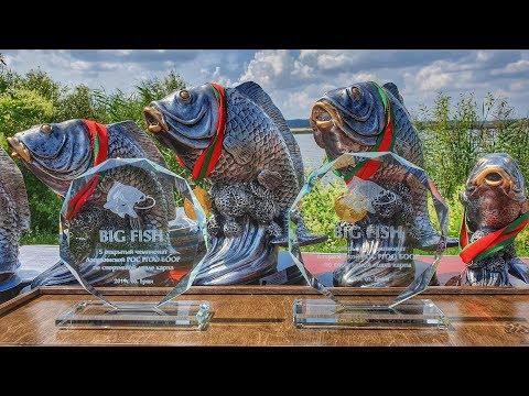 5-й открытый чемпионат Дзержинской РОС РГОО БООР по спортивной ловле карпа. оз.Ерши 2019 год.