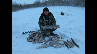 ЖЕРЛИЦЫ САМОДЕЛКИ! Щука есть и клёв отличный! Зимняя рыбалка по щуке удалась! Классный отдых на реке