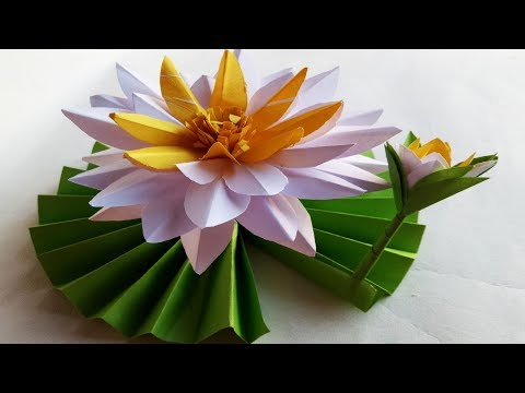 DIY How to Make Most Beautiful Lotus/ Water Lily.