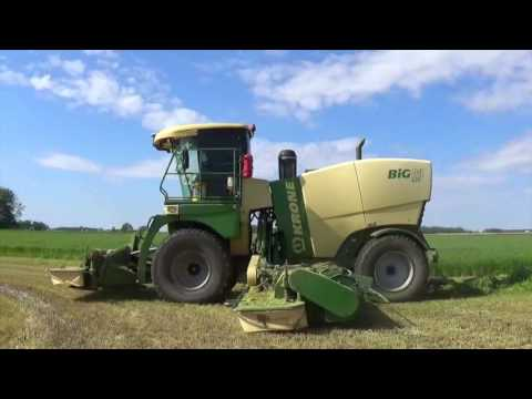 Mowing Wheat with a Krone 420 Big M Mower near Berne Indiana
