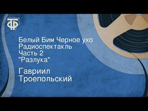 Гавриил Троепольский. Белый Бим Черное ухо. Радиоспектакль. Часть 2. \