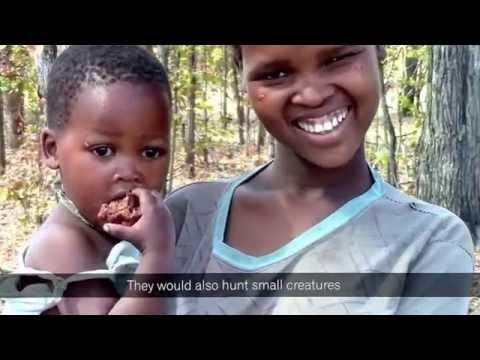 The Last Bushmen of Zimbabwe