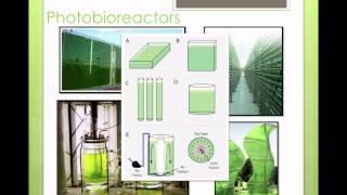 Video 6-4 Bioreactors