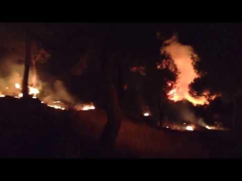 Incendio hoyo de pinares