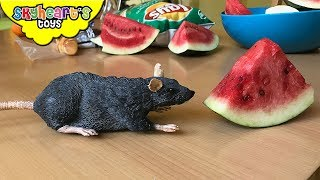 There's a SCARY MOUSE in our Kitchen! Skyheart and Mimi the Dinosaur attacks the mouse toy for kids
