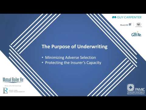 Virtual Insurance School: Underwriting and Claims Basics