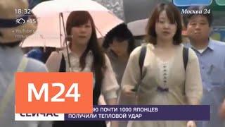 Смотреть видео Около тысячи человек попали в больницы в Японии из-за жары - Москва 24 онлайн
