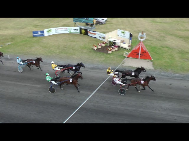 DIAMOND CREEK FARMS VDM FILLIES FINAL 2017