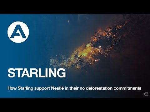 How Starling support Nestlé in their no deforestation commitments?