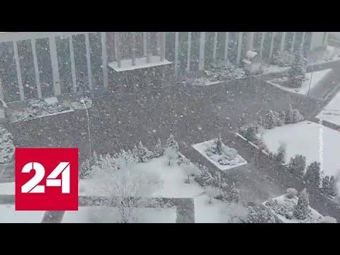 """""""Погода 24"""": последняя атака зимы - Россия 24"""