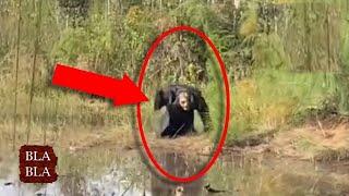 5 مخلوقات مخيفة صورتها عدسات الكاميرا لم يجدو لها تفسير ! بلا بلا