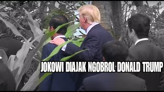 Tiba-tiba Jokowi ditepuk Pundaknya oleh Donald Trump diajak Ngobrol