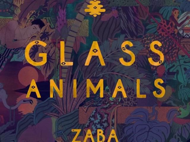 glass-animals-hazey-stripped-matteo-zolt