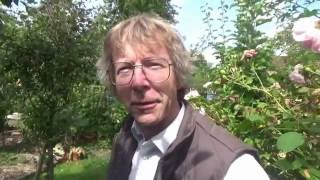 Pruning a Mulberry Tree with Nigel