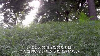 大田区にある多摩川台公園の古墳を中心に、その変遷を動画にまとめてみ...