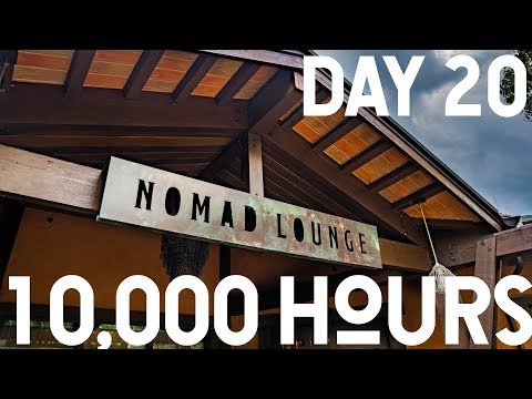 Nomad Lounge And The BEST French Press Coffee - Disney's Animal Kingdom