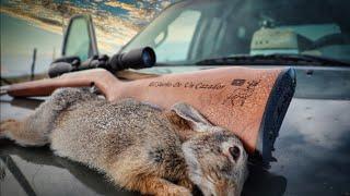 CAZA de Conejo 🐇 SOLO en las Montañas echando Cafe ☕ Animales Salvajes