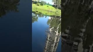 Монстр бычок и мега окунь на мормышку Мормышинг в городе 2021