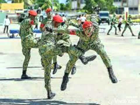 Brunei Darussalam Military